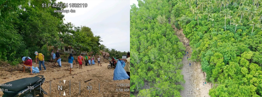 Celebration of World Mangrove Day through the Conduct of Simultaneous Coastal Clean-Up and Mangrove Tree Planting Activity